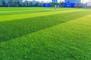 konserwacja sztuczna trawa