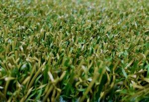Sztuczna trawa IV genreacji